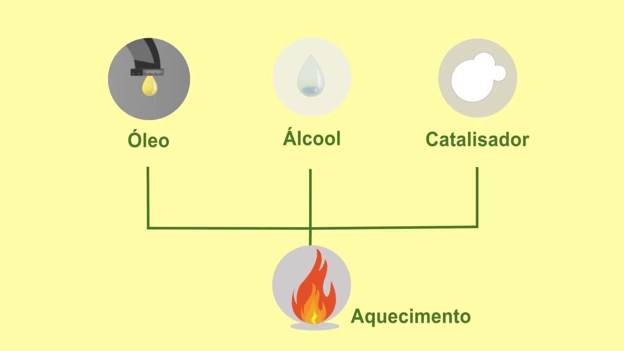 Processo de producao biodiesel