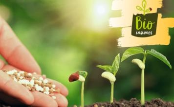 programa bioinsumos bioeconomia